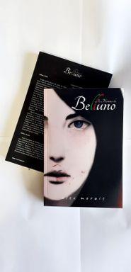 """Livro """"A Menina de Belluno"""" é lançado através de Apoio Cultural"""