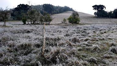 Previsão segue indicando frio muito intenso, neve, geada e congelamento na próxima semana