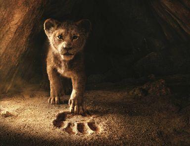 O Rei Leão estreia nesta quinta-feira no Cine Gracher de Joaçaba
