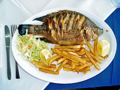 O peixe do milagre de Jesus era Tilápia