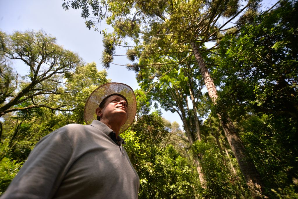 Seu Chico, diretor e proprietário da Tertúlia. (Foto: Arnaldo Telles)