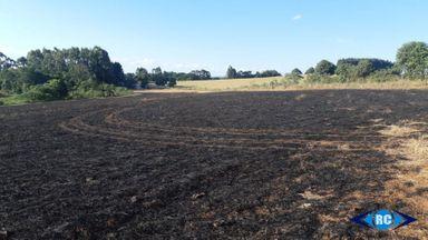 Possível incêndio criminoso atinge 12 hectares de lavoura no interior de Capinzal