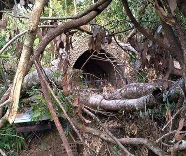 Milagre? 42 dias após tornado em Água Doce, gruta ressurge intacta