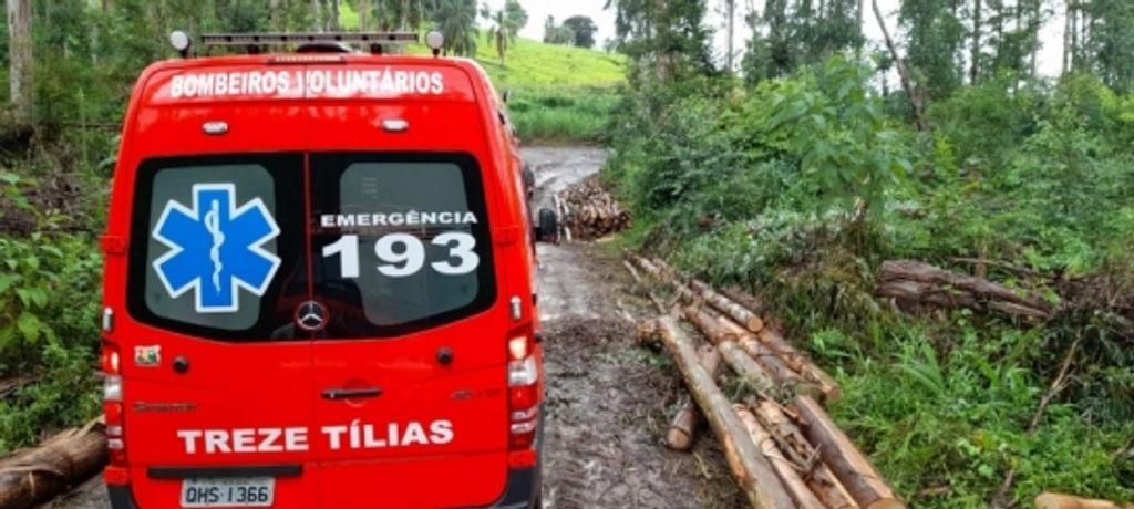 Homem morre após ser atingido por árvore enquanto trabalhava