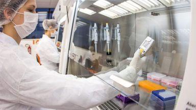 Governo de SC cria rede para monitorar surto e mutação da Covid-19