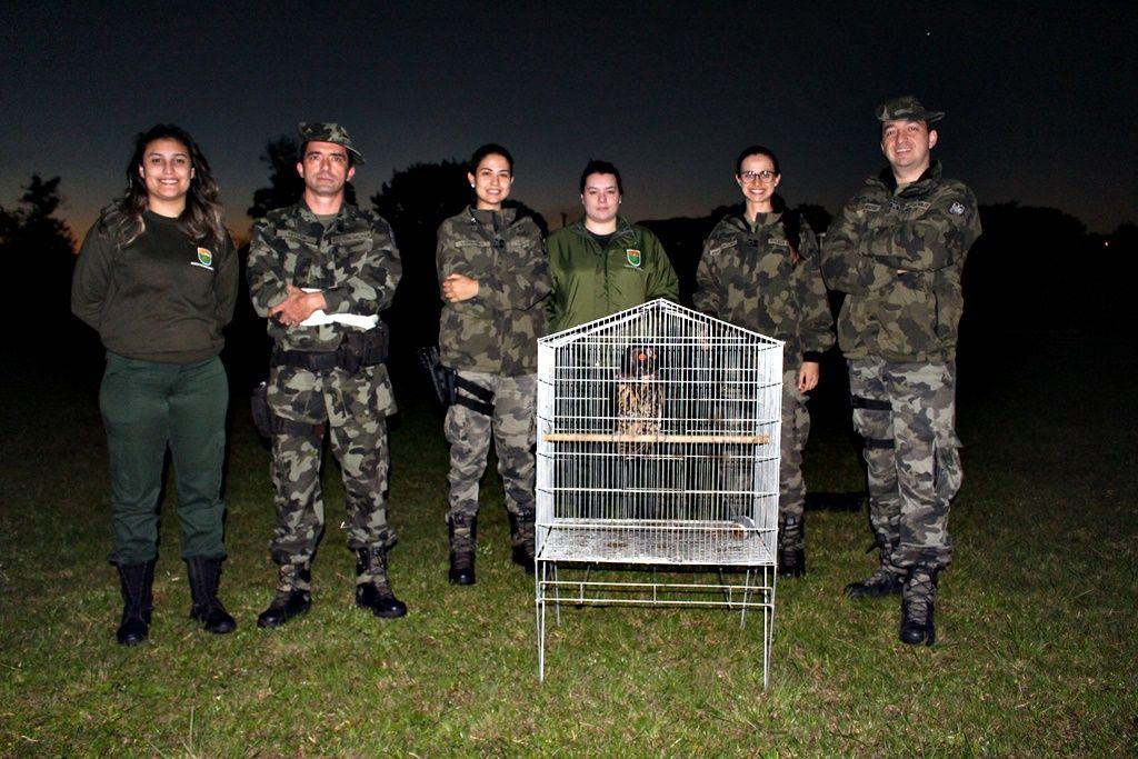 Equipe da PMA no local onde a coruja foi solta. (Fotos: Portal Éder Luiz)