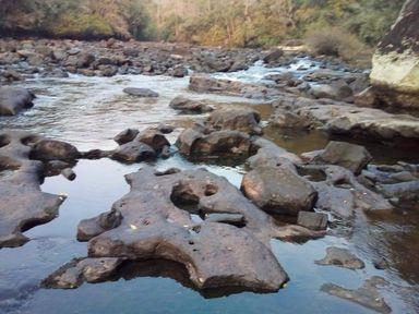 Rio Chapecozinho, na região Oeste - Foto: Comitê de Gerenciamento da Bacia Hidrográfica/Defesa Civil