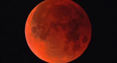 (Foto: Sputnik Brasil)