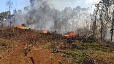 Bombeiros controlam incêndio de grandes proporções em área de mata
