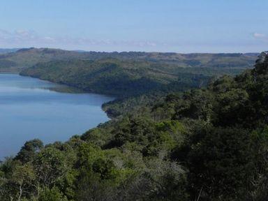 Epagri tem programação online para a Semana do Meio Ambiente de 1º a 5 de junho