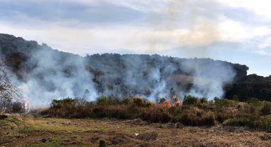 O incêndio no veículo se alastrou pela área e os bombeiros evitaram que chegasse até as casas.