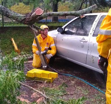Árvore caiu sobre um carro durante o temporal. (Fotos: Corpo de Bombeiros de Campos Novos)